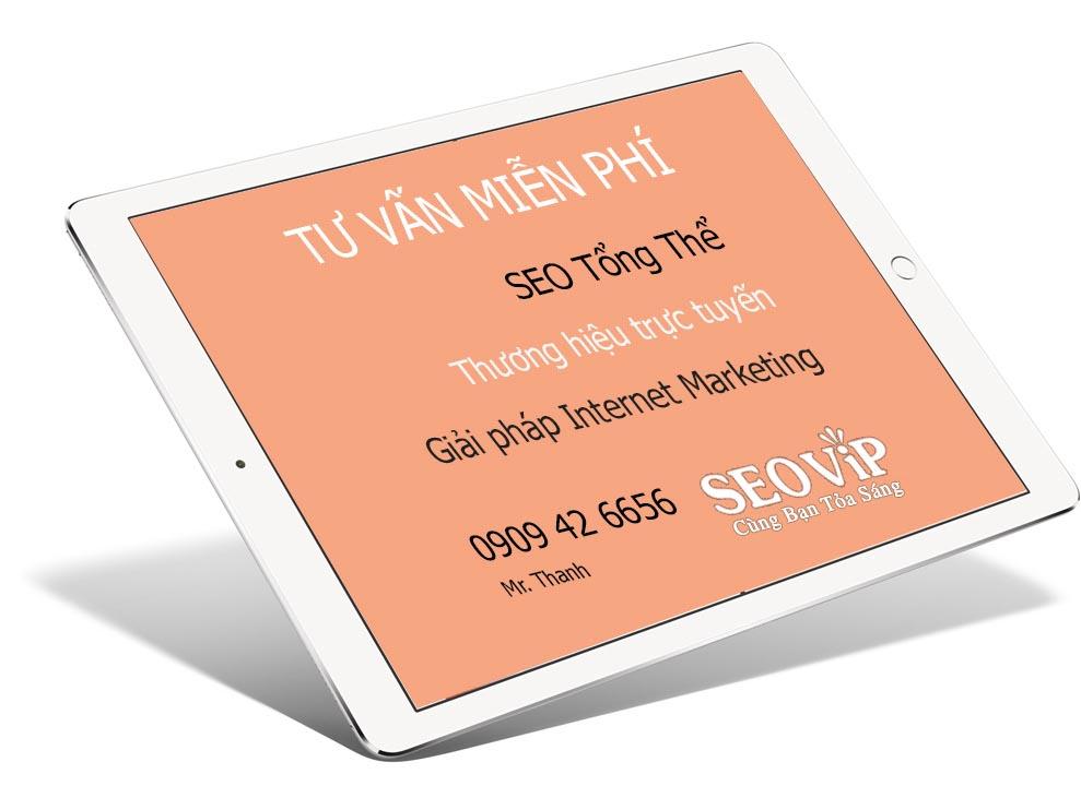 Tư vấn SEO tổng thể, Internet Marketing