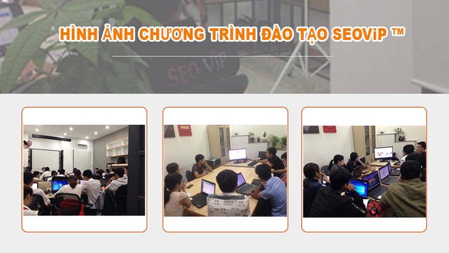 Chương trình đào tạo tại seovip