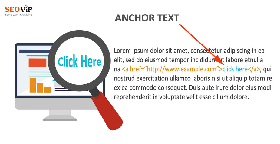 anchor text phong phú
