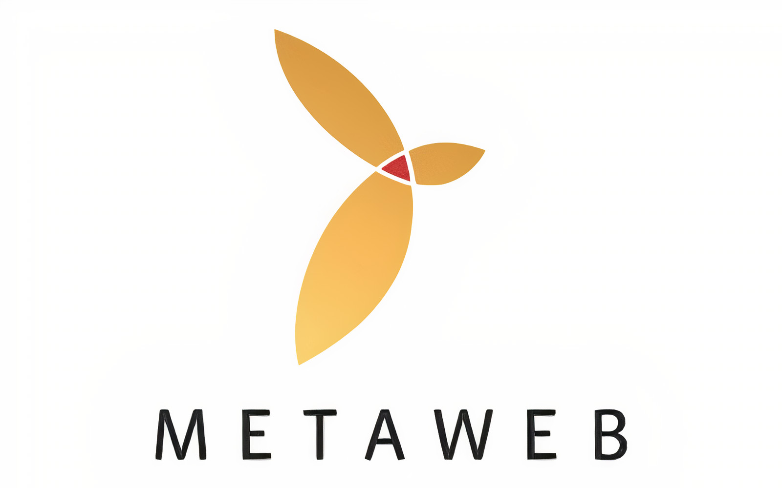 Nền tảng Entity là gì? MetaWeb